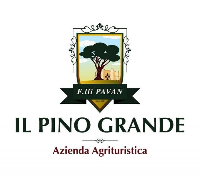 Il Pino Grande - Masseria Citulo